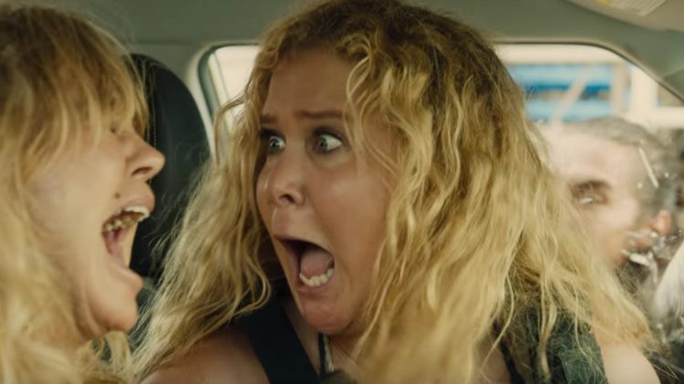 Goldie Hawn, Amy Schumer, Snatched